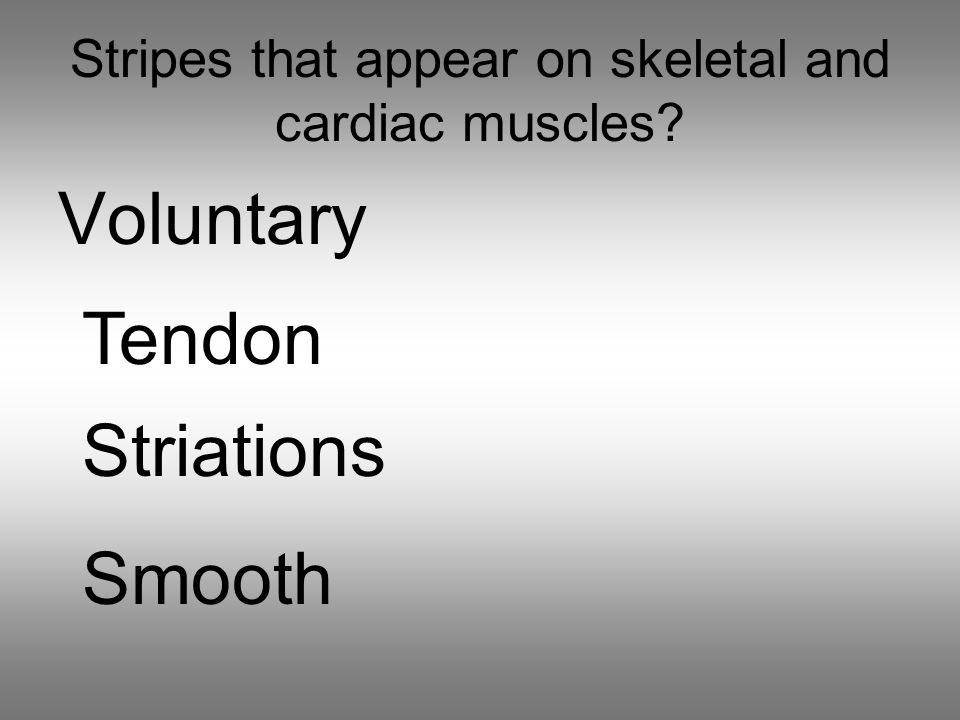 Stripes that appear on skeletal and cardiac muscles Voluntary Tendon Striations Smooth