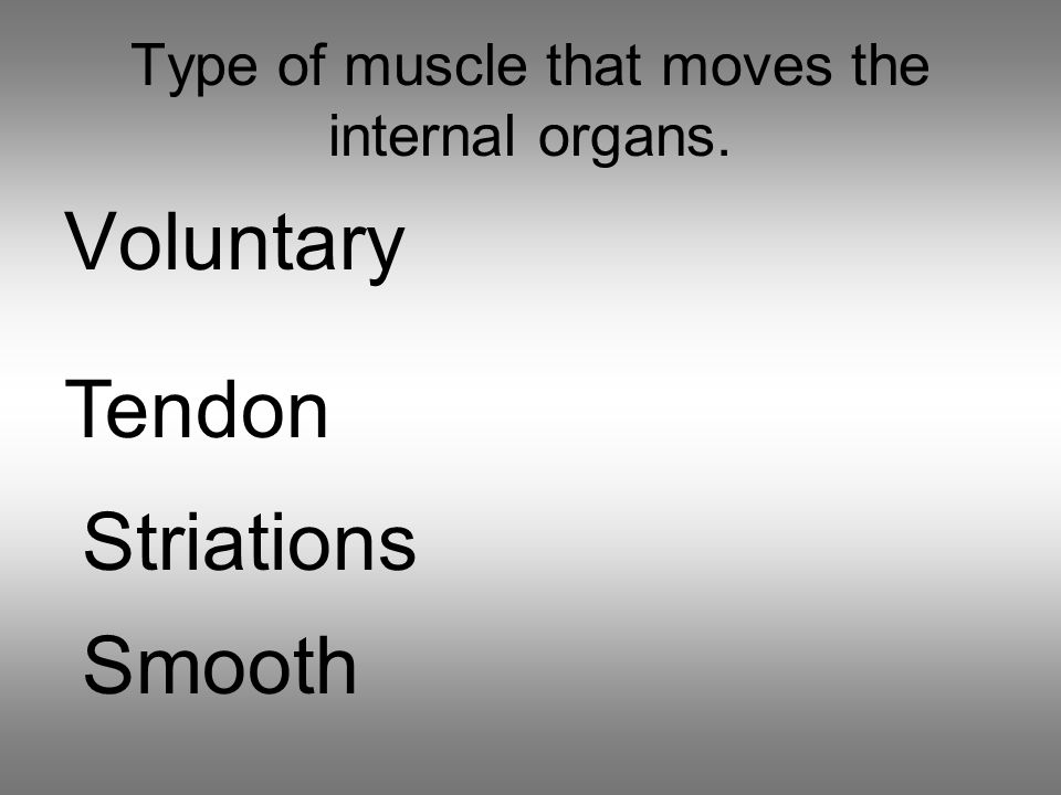 Type of muscle that moves the internal organs. Voluntary Tendon Striations Smooth
