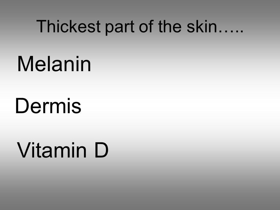 Thickest part of the skin….. Melanin Dermis Vitamin D