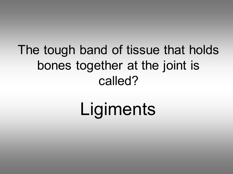 The tough band of tissue that holds bones together at the joint is called Ligiments