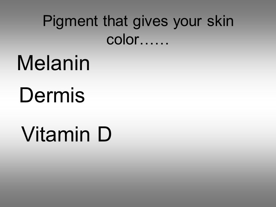 Pigment that gives your skin color…… Melanin Dermis Vitamin D