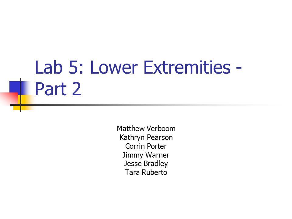 Lab 5: Lower Extremities - Part 2 Matthew Verboom Kathryn Pearson Corrin Porter Jimmy Warner Jesse Bradley Tara Ruberto