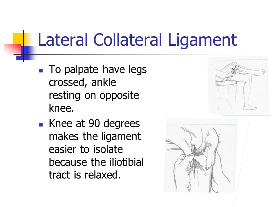 Lateral Collateral Ligament To palpate have legs crossed, ankle resting on opposite knee. Knee at 90 degrees makes the ligament easier to isolate beca