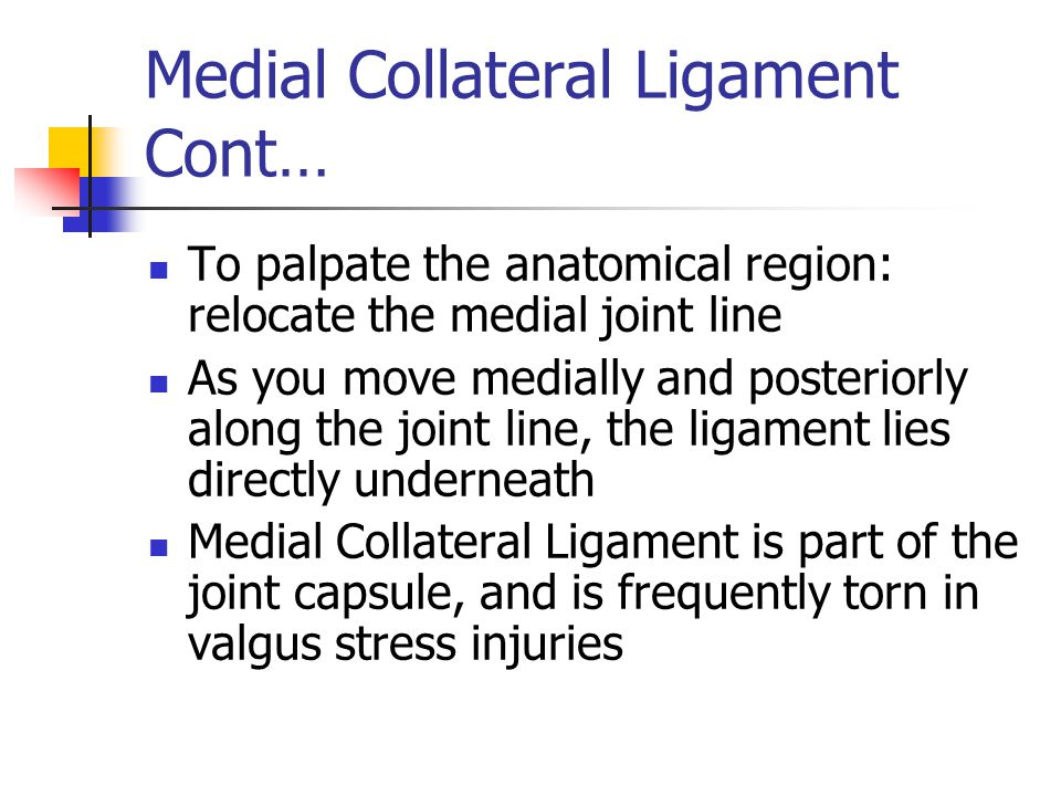 Medial Collateral Ligament Cont… To palpate the anatomical region: relocate the medial joint line As you move medially and posteriorly along the joint