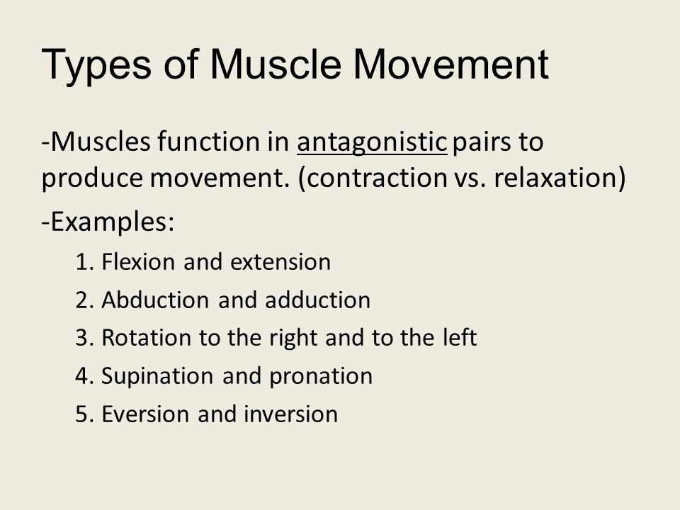 Types of Muscle Movement -Muscles function in antagonistic pairs to produce movement. (contraction vs. relaxation) -Examples: 1. Flexion and extension