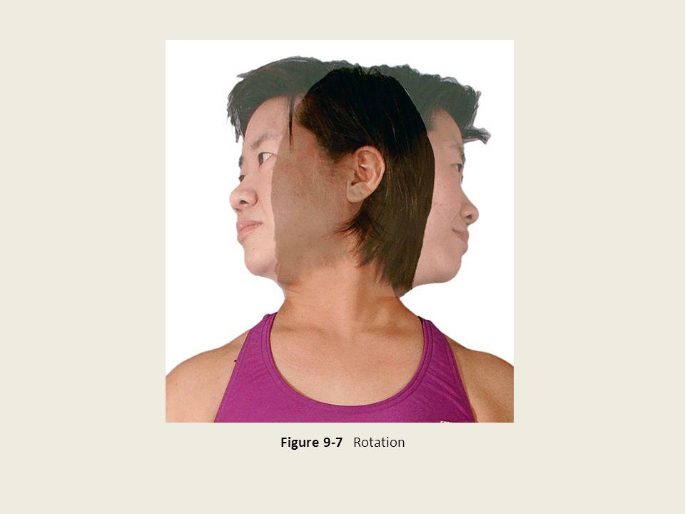 Figure 9-7 Rotation