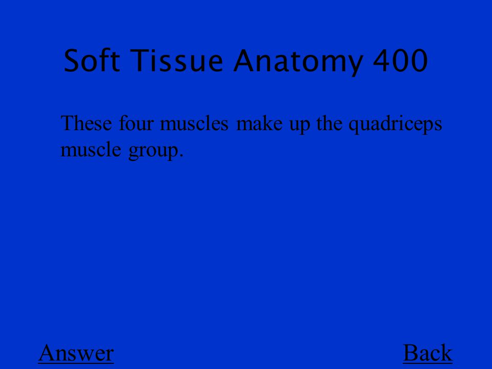 Soft Tissue Anatomy 400 Back These four muscles make up the quadriceps muscle group. Answer