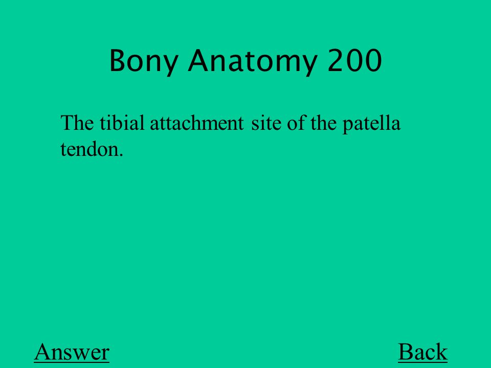 Bony Anatomy 200 Back The tibial attachment site of the patella tendon. Answer