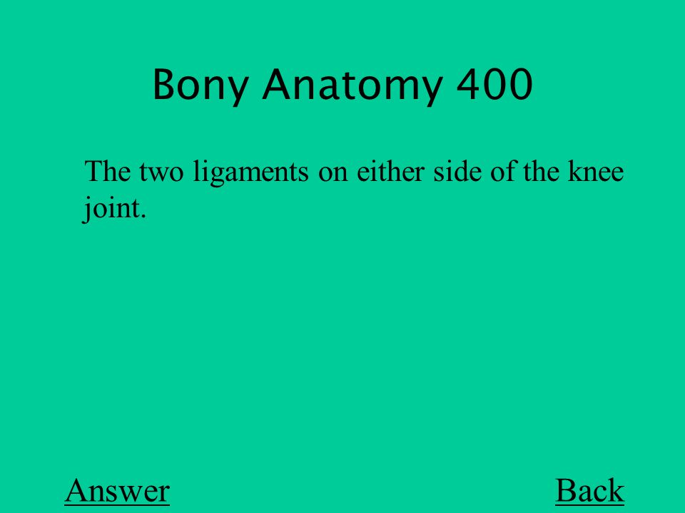 Bony Anatomy 400 Back The two ligaments on either side of the knee joint. Answer