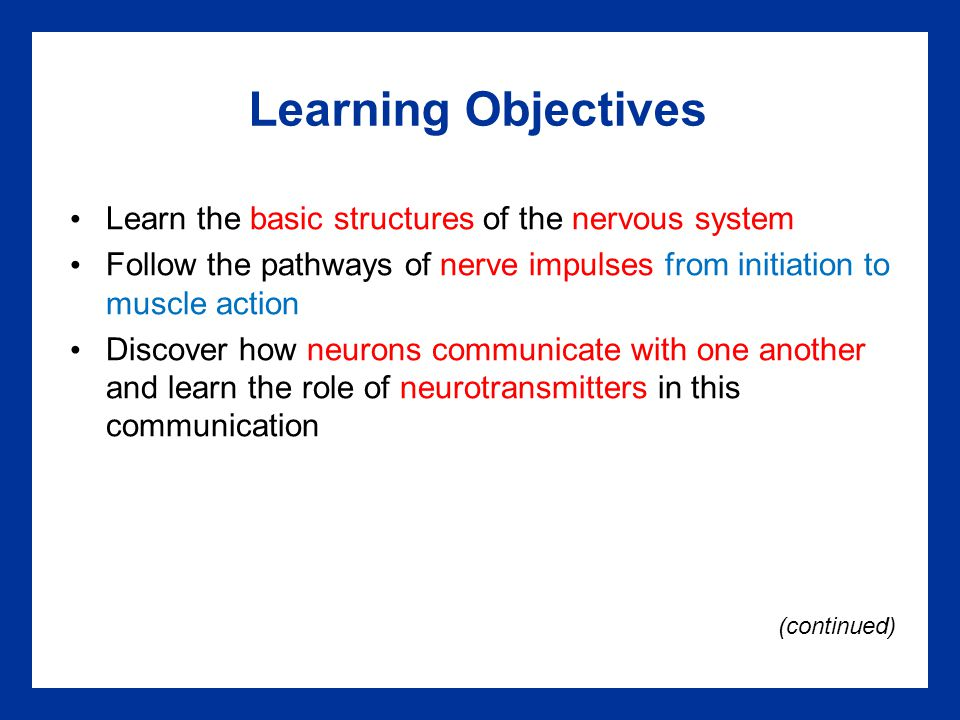 Learning Objectives Learn the basic structures of the nervous system Follow the pathways of nerve impulses from initiation to muscle action Discover h