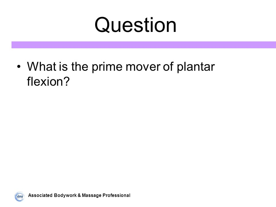 Associated Bodywork & Massage Professional Question What is the prime mover of plantar flexion