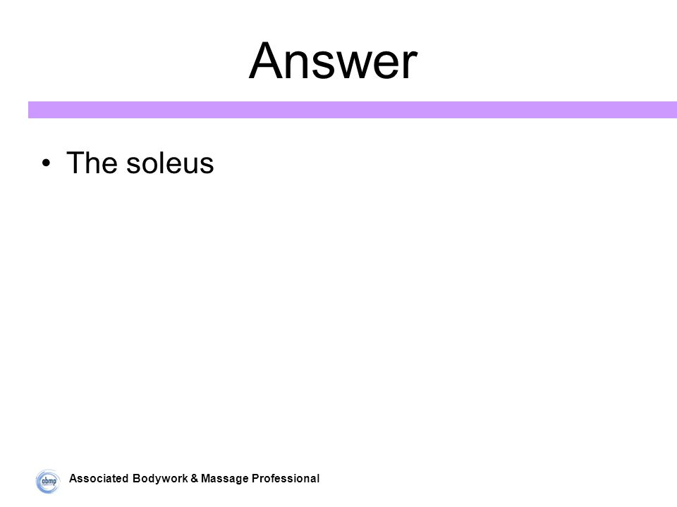 Associated Bodywork & Massage Professional Answer The soleus