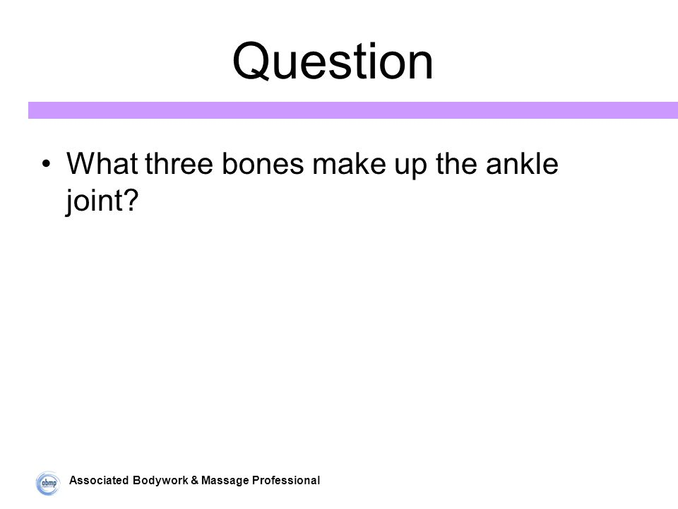 Associated Bodywork & Massage Professional Question What three bones make up the ankle joint