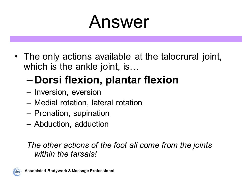 Associated Bodywork & Massage Professional Answer The only actions available at the talocrural joint, which is the ankle joint, is… –Dorsi flexion, plantar flexion –Inversion, eversion –Medial rotation, lateral rotation –Pronation, supination –Abduction, adduction The other actions of the foot all come from the joints within the tarsals!
