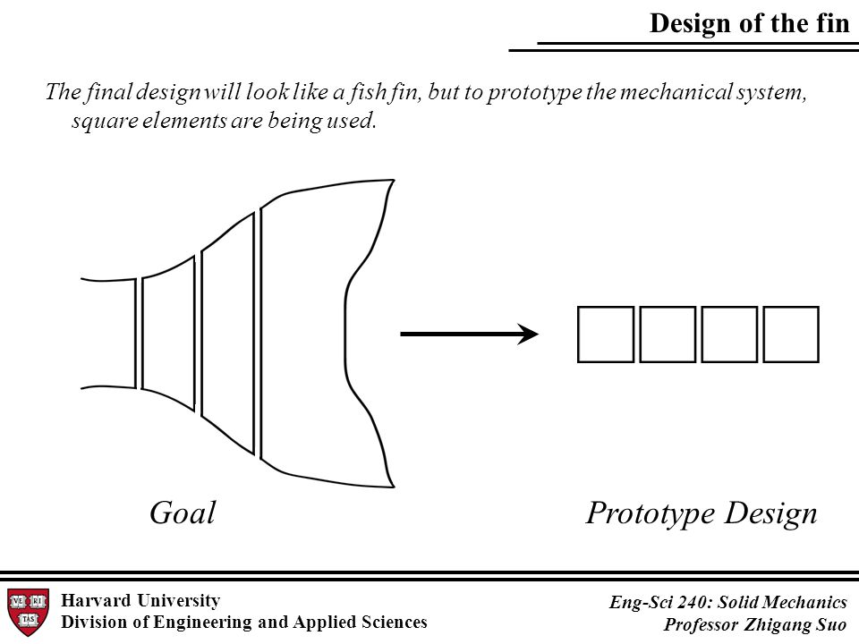 Design of the fin Harvard University Division of Engineering and Applied Sciences Eng-Sci 240: Solid Mechanics Professor Zhigang Suo GoalPrototype Design The final design will look like a fish fin, but to prototype the mechanical system, square elements are being used.
