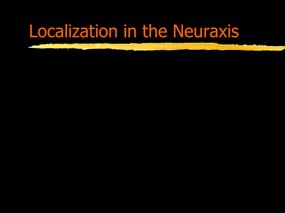 Localization in the Neuraxis