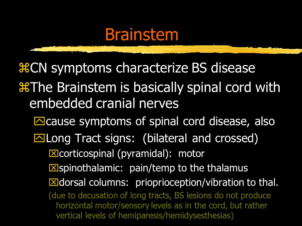 Brainstem zCN symptoms characterize BS disease zThe Brainstem is basically spinal cord with embedded cranial nerves ycause symptoms of spinal cord disease, also yLong Tract signs: (bilateral and crossed) xcorticospinal (pyramidal): motor xspinothalamic: pain/temp to the thalamus xdorsal columns: prioprioception/vibration to thal.