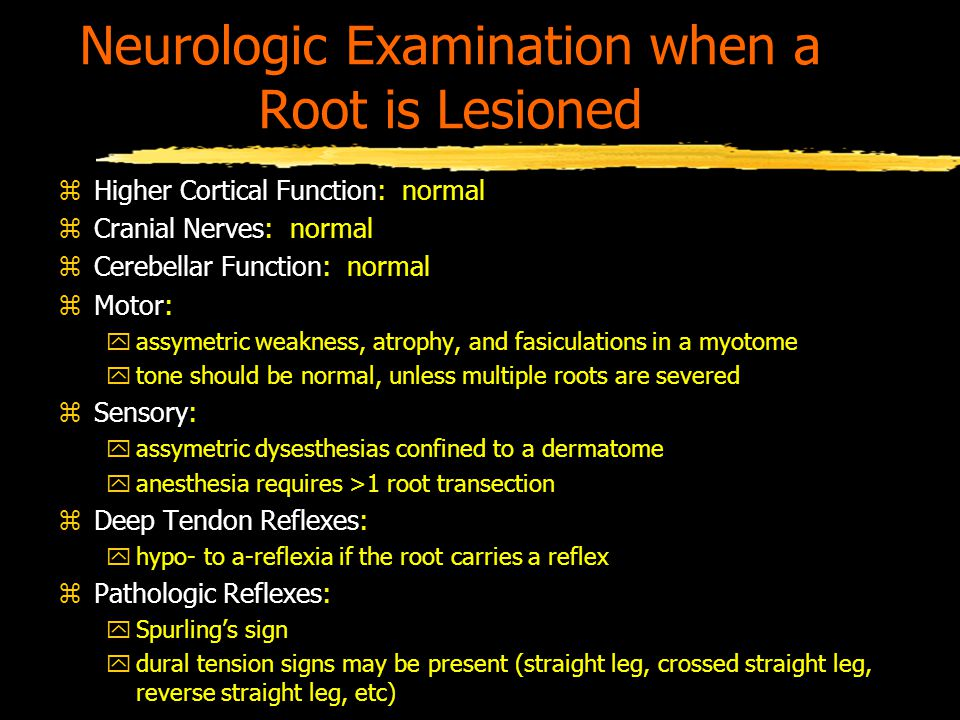 Neurologic Examination when a Root is Lesioned zHigher Cortical Function: normal zCranial Nerves: normal zCerebellar Function: normal zMotor: yassymetric weakness, atrophy, and fasiculations in a myotome ytone should be normal, unless multiple roots are severed zSensory: yassymetric dysesthesias confined to a dermatome yanesthesia requires >1 root transection zDeep Tendon Reflexes: yhypo- to a-reflexia if the root carries a reflex zPathologic Reflexes: ySpurling's sign ydural tension signs may be present (straight leg, crossed straight leg, reverse straight leg, etc)