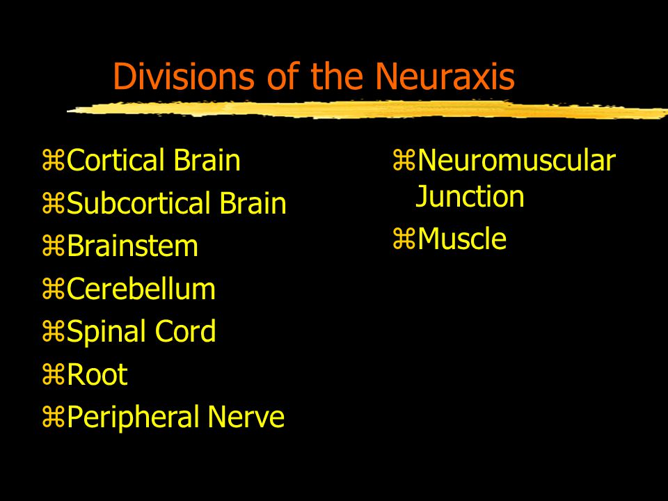 Divisions of the Neuraxis zCortical Brain zSubcortical Brain zBrainstem zCerebellum zSpinal Cord zRoot zPeripheral Nerve zNeuromuscular Junction zMuscle