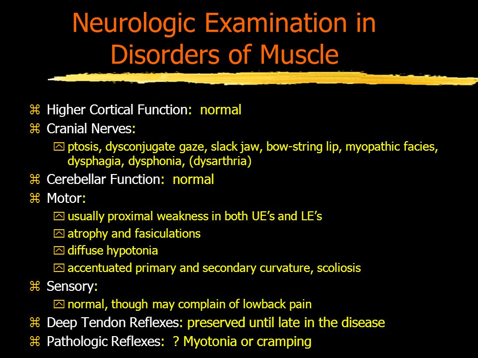 Neurologic Examination in Disorders of Muscle zHigher Cortical Function: normal zCranial Nerves: yptosis, dysconjugate gaze, slack jaw, bow-string lip, myopathic facies, dysphagia, dysphonia, (dysarthria) zCerebellar Function: normal zMotor: yusually proximal weakness in both UE's and LE's yatrophy and fasiculations ydiffuse hypotonia yaccentuated primary and secondary curvature, scoliosis zSensory: ynormal, though may complain of lowback pain zDeep Tendon Reflexes: preserved until late in the disease zPathologic Reflexes: .
