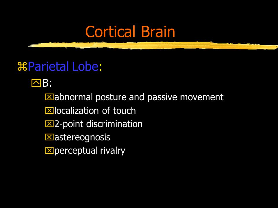 Cortical Brain zParietal Lobe: yB: xabnormal posture and passive movement xlocalization of touch x2-point discrimination xastereognosis xperceptual rivalry