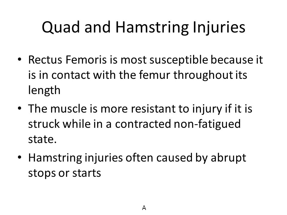 Quad and Hamstring Injuries Rectus Femoris is most susceptible because it is in contact with the femur throughout its length The muscle is more resist
