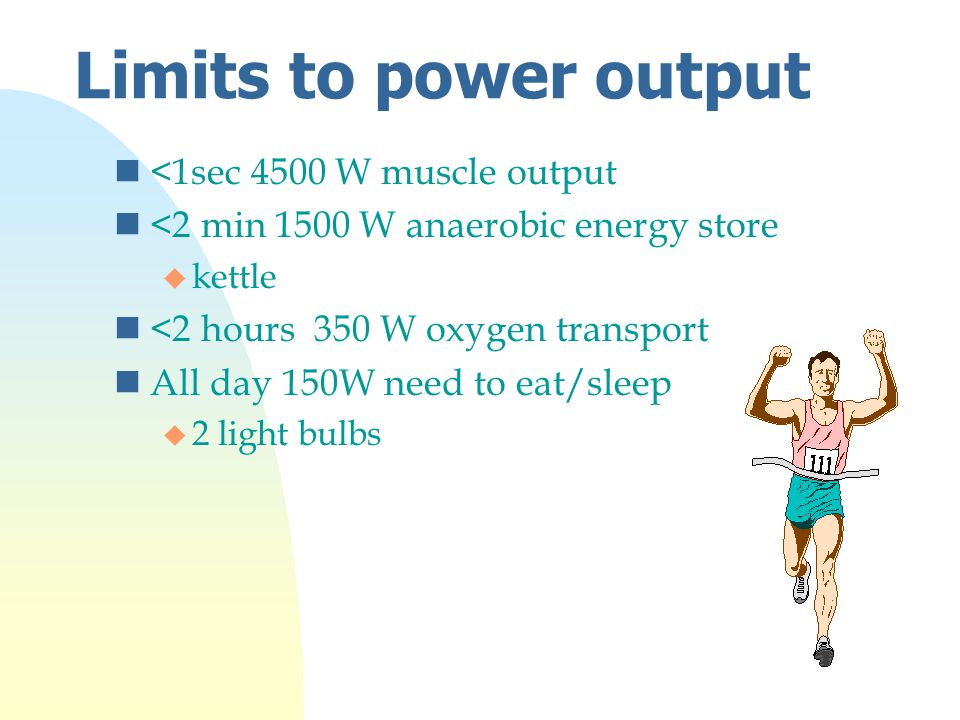 Limits to power output n<1sec 4500 W muscle output n<2 min 1500 W anaerobic energy store u kettle n<2 hours 350 W oxygen transport nAll day 150W need to eat/sleep u 2 light bulbs