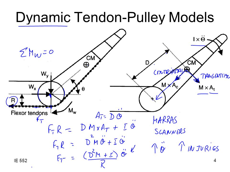 IE 552 4 Dynamic Tendon-Pulley Models