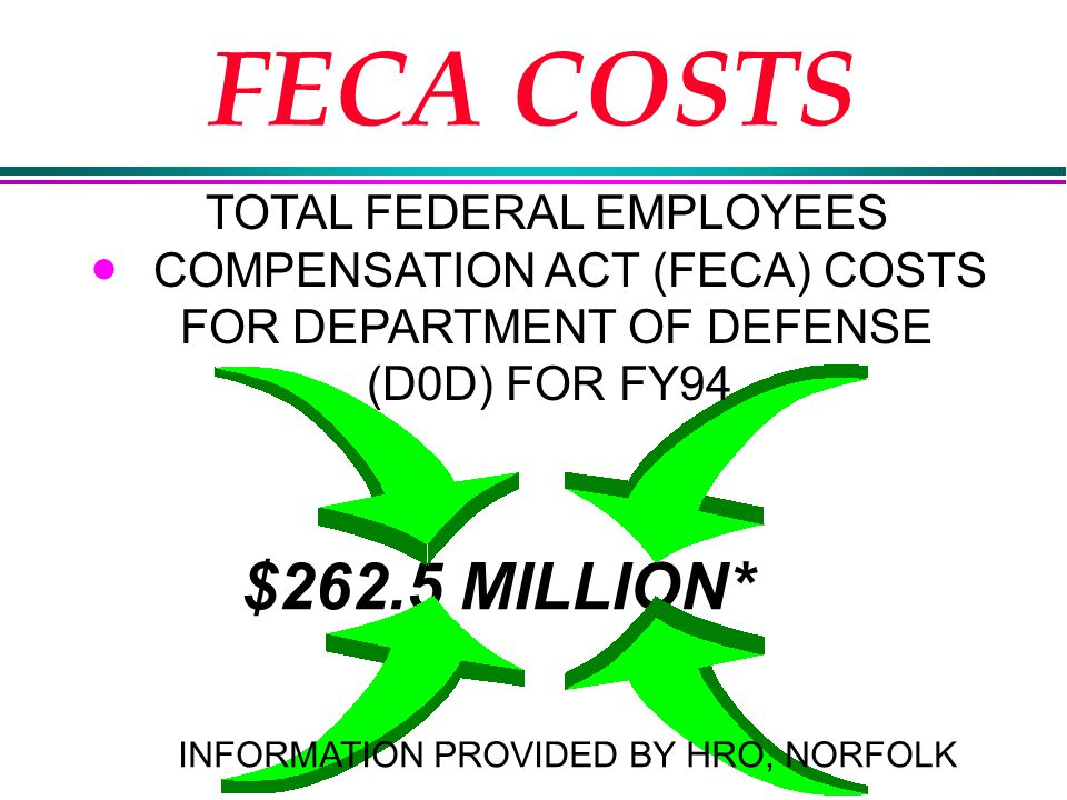 FECA COSTS l $262.5 MILLION* INFORMATION PROVIDED BY HRO, NORFOLK TOTAL FEDERAL EMPLOYEES COMPENSATION ACT (FECA) COSTS FOR DEPARTMENT OF DEFENSE (D0D) FOR FY94