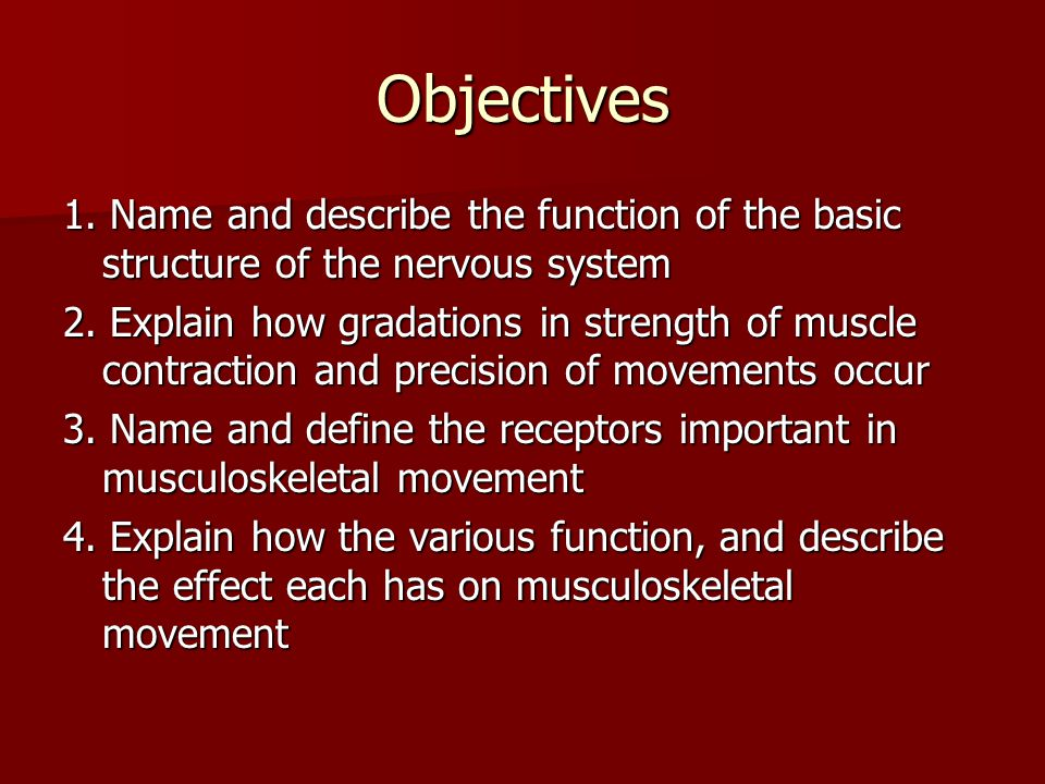 Objectives 1.Name and describe the function of the basic structure of the nervous system 2.