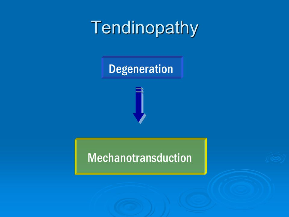 Tendinopathy Degeneration Mechanotransduction