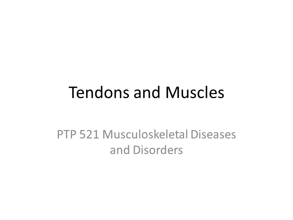 Tendons and Muscles PTP 521 Musculoskeletal Diseases and Disorders