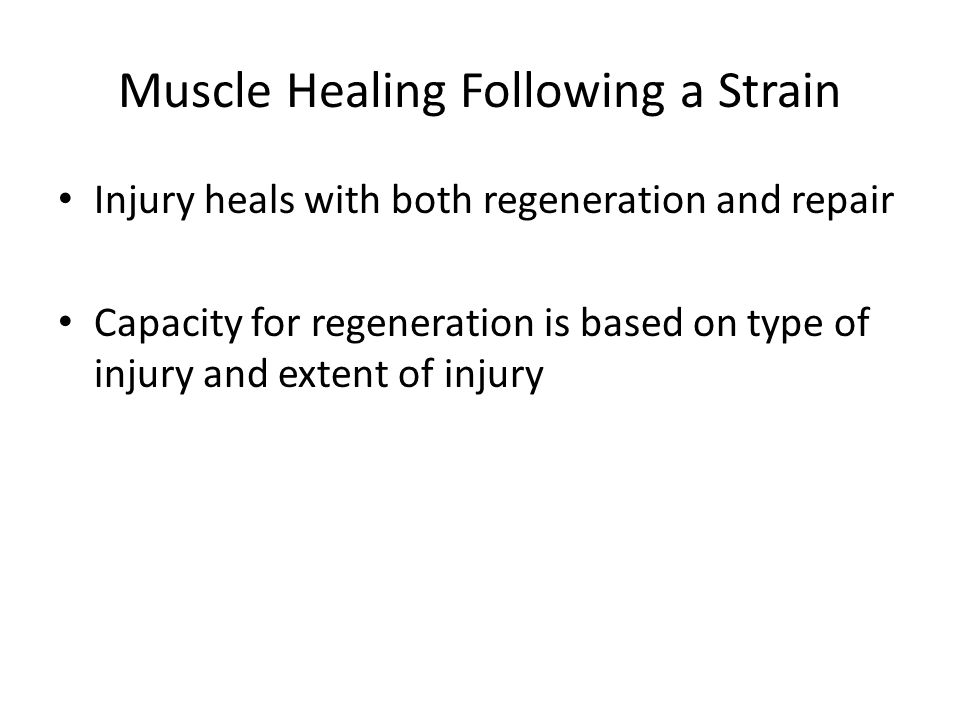 Muscle Healing Following a Strain Injury heals with both regeneration and repair Capacity for regeneration is based on type of injury and extent of injury