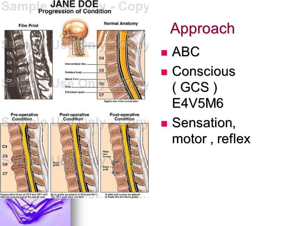 Approach ABC ABC Conscious ( GCS ) E4V5M6 Conscious ( GCS ) E4V5M6 Sensation, motor, reflex Sensation, motor, reflex