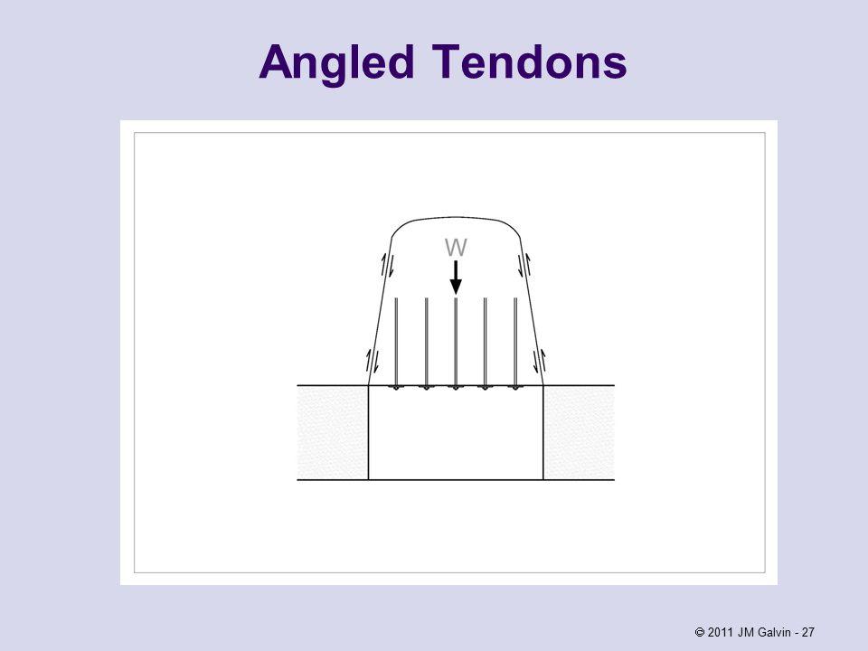 Angled Tendons  2011 JM Galvin - 27