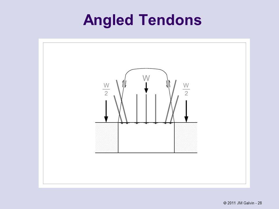 Angled Tendons  2011 JM Galvin - 28