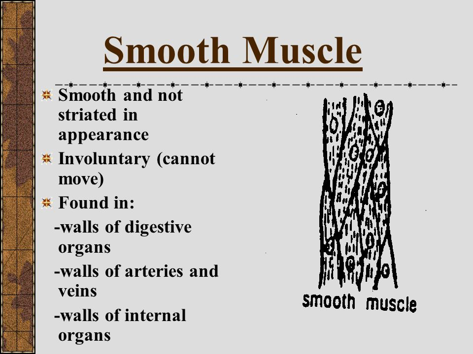 Summary When the bicep contracts, the arm bends upward (flexes) and therefore the bicep is known as a flexor When the triceps contracts, the arm extends outward and therefore the triceps is known as an extensor