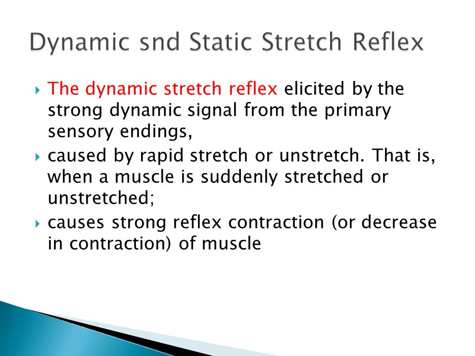  The dynamic stretch reflex elicited by the strong dynamic signal from the primary sensory endings,  caused by rapid stretch or unstretch.