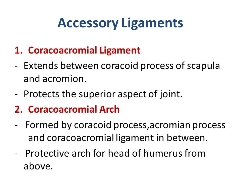 Accessory Ligaments 1.Coracoacromial Ligament -Extends between coracoid process of scapula and acromion. -Protects the superior aspect of joint. 2.Cor