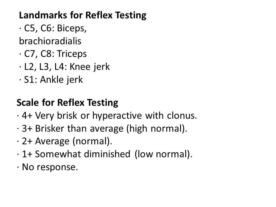 Landmarks for Reflex Testing · C5, C6: Biceps, brachioradialis · C7, C8: Triceps · L2, L3, L4: Knee jerk · S1: Ankle jerk Scale for Reflex Testing · 4