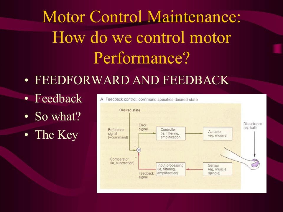 Motor Control Maintenance: How do we control motor Performance.