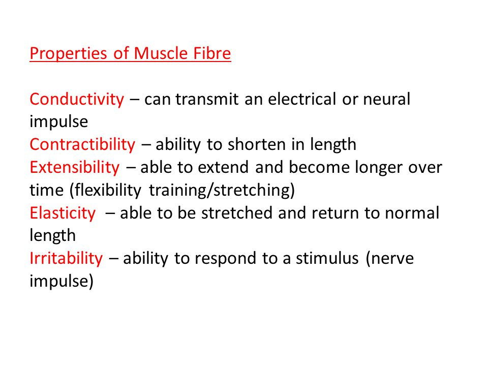 Muscle Pairs Agonist and Antagonist Example – Muscles work in pairs to counteract each other's movement.