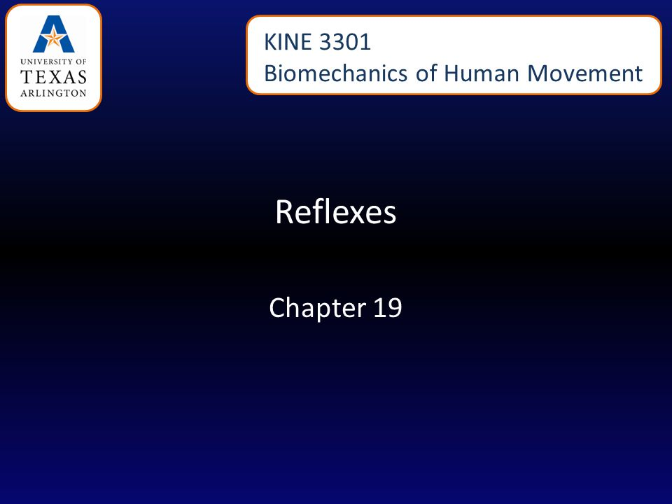 Reflexes Chapter 19 KINE 3301 Biomechanics of Human Movement
