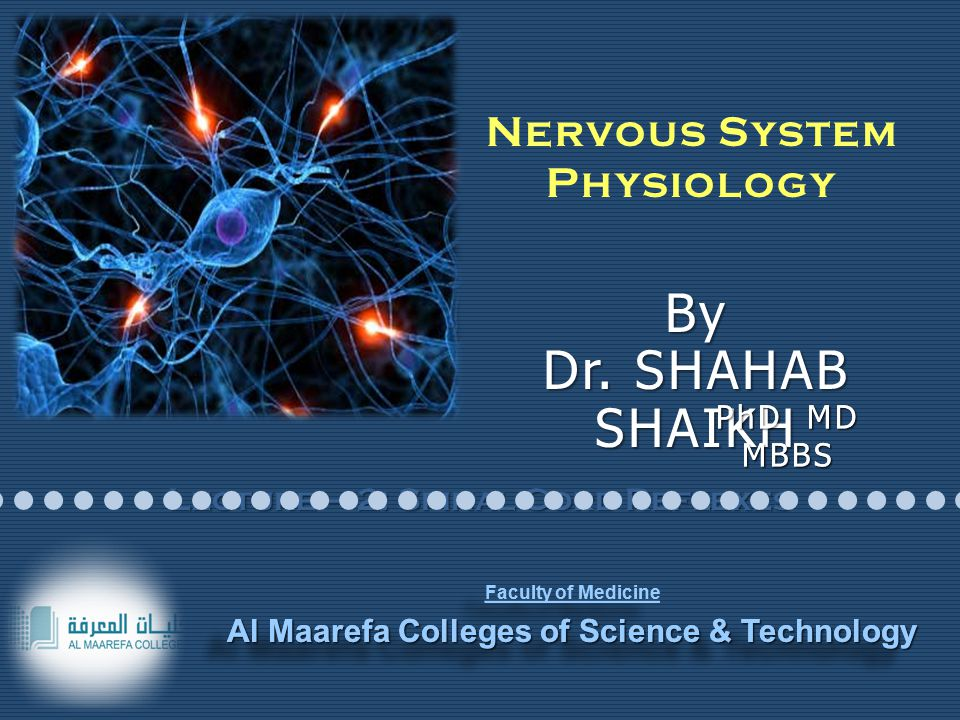 PhD MD MBBS Faculty of Medicine Al Maarefa Colleges of Science & Technology Faculty of Medicine Al Maarefa Colleges of Science & Technology Lecture – 2: Spinal Cord Reflexes Nervous System Physiology By Dr.