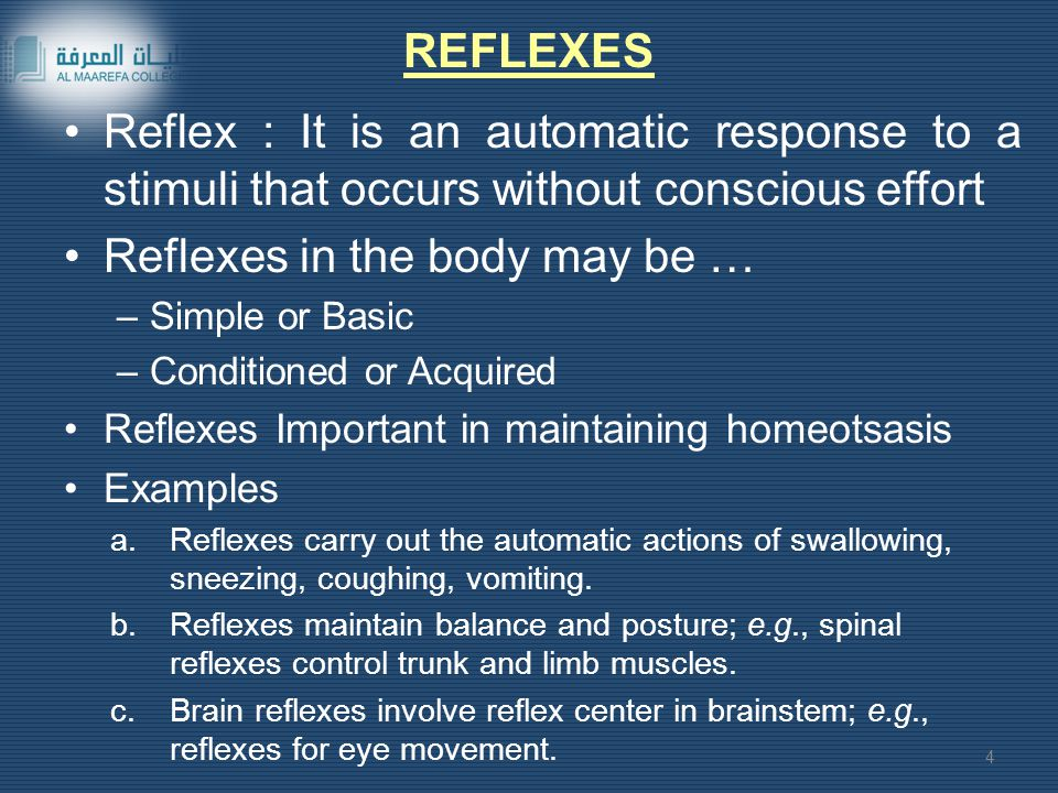 Reflex : It is an automatic response to a stimuli that occurs without conscious effort Reflexes in the body may be … –Simple or Basic –Conditioned or Acquired Reflexes Important in maintaining homeotsasis Examples a.Reflexes carry out the automatic actions of swallowing, sneezing, coughing, vomiting.