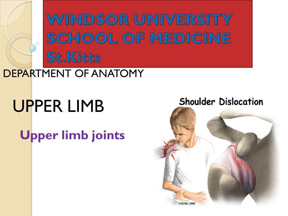 DEPARTMENT OF ANATOMY UPPER LIMB Upper limb joints
