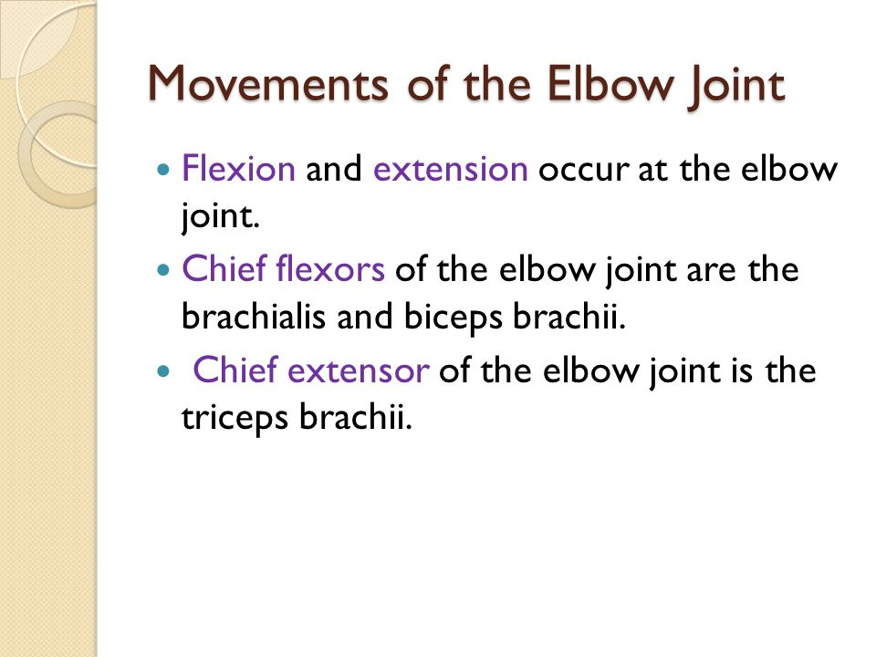 Movements of the Elbow Joint Flexion and extension occur at the elbow joint. Chief flexors of the elbow joint are the brachialis and biceps brachii. C