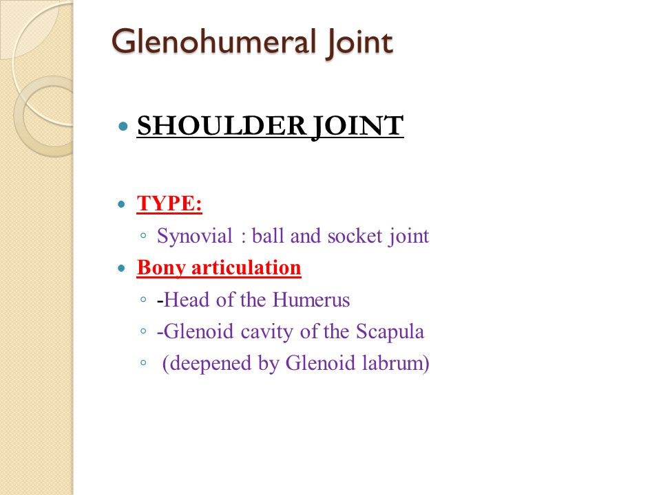Glenohumeral Joint SHOULDER JOINT TYPE: ◦ Synovial : ball and socket joint Bony articulation ◦ -Head of the Humerus ◦ -Glenoid cavity of the Scapula ◦