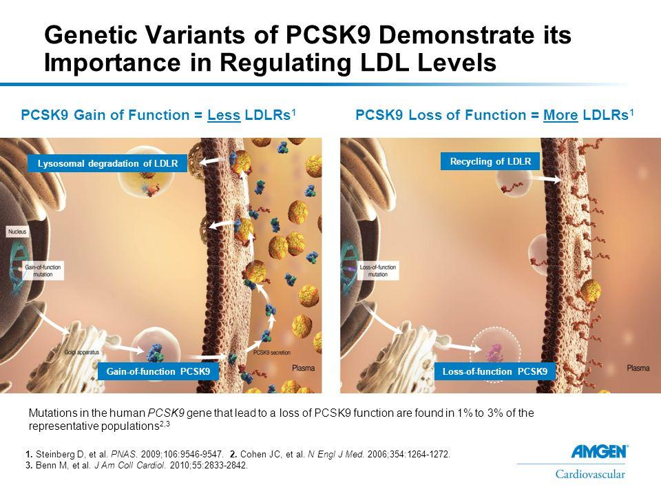PCSK9 GOF Mutations