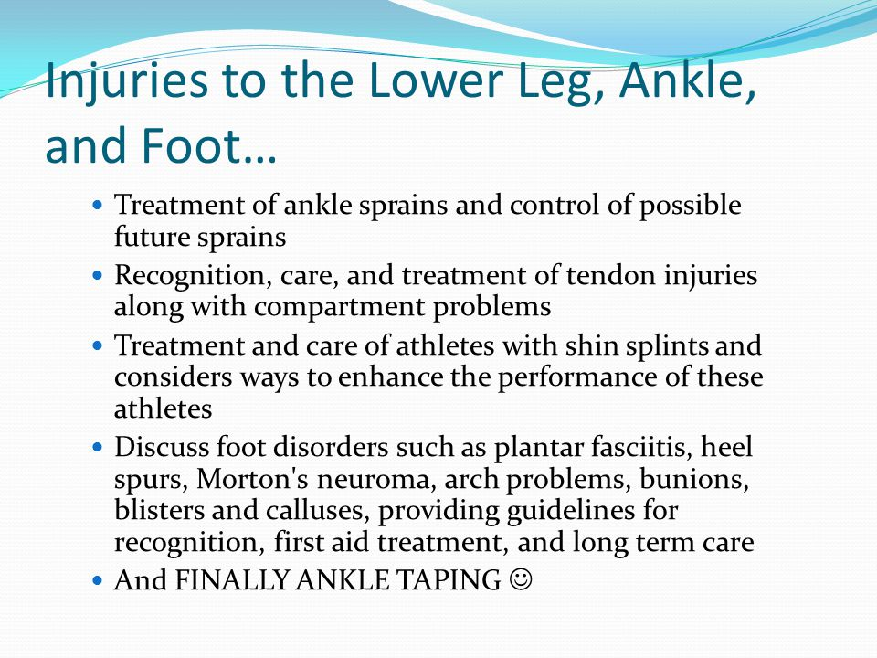 Anatomy Review The lower leg, ankle, and foot work together to provide a stable base of support and a dynamic system of movement The skeleton of the lower leg consist of the tibia and fibula